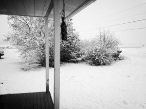 snow 02